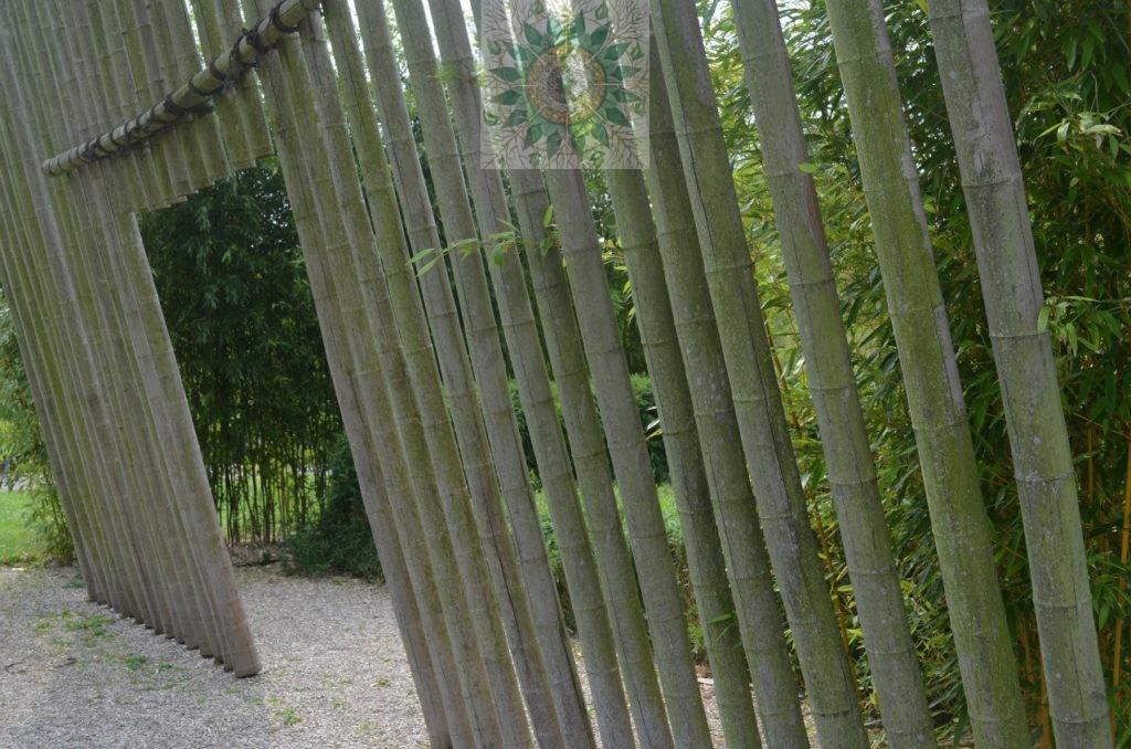 Фрагмент площадки отдыха  на нижней террасе